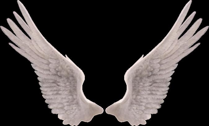 Concours mariage neildelirium le blog de for Tableau aile d ange